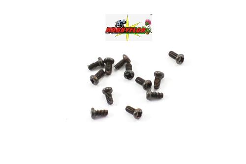 FTX IBEX WASHER HEAD SCREWS 2*4MM (12) FTX7449