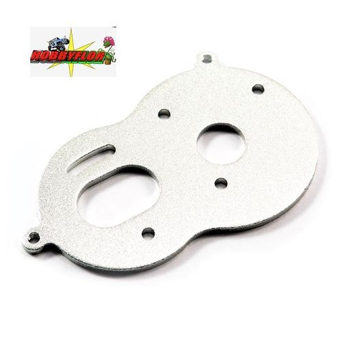 FTX MIGHTY THUNDER MOTOR PLATE (1PC) FTX8430